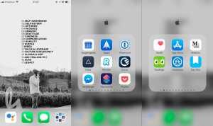iPhoneHomeScreen 3