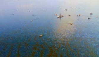 Deniz Kirliliğinin Cezaları Arttırıldı