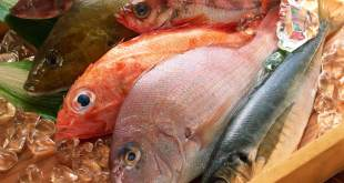 Culinary,_best_quality_Wallpapers_-_Mixed_fish