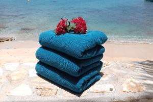 denlaman_beachtowel_service