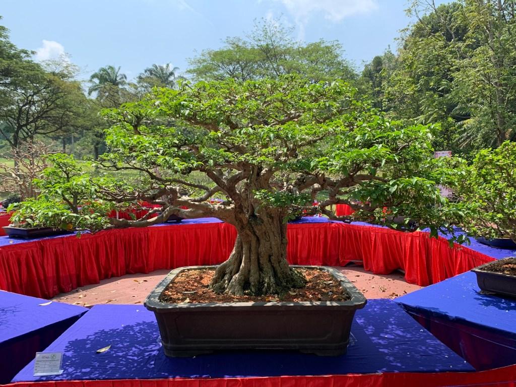 Putrajaya Floria 2019