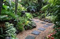 Tropical Garden Image Gallery - Dennis Hundscheidt