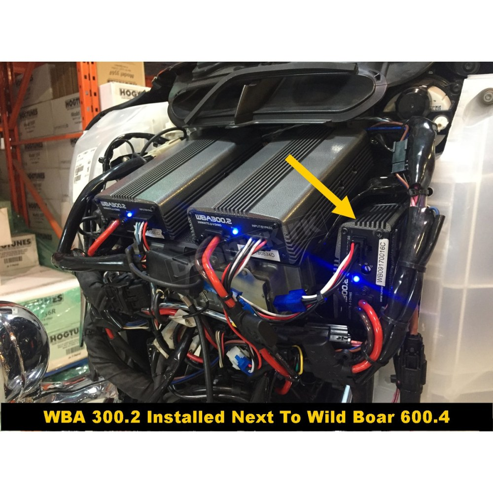 medium resolution of hogtunes wild boar 300 watt amplifier kit wba 300 2 harley hogtunes amp wiring harness