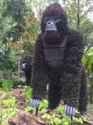2014-08-31 Atlanta Botanical Garden-02