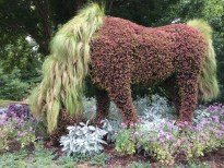 2014-08-31 Atlanta Botanical Garden-25