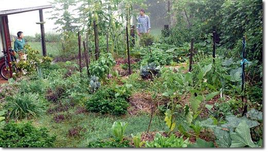 Personal Garden