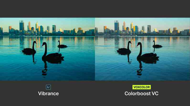Colorboost VC protects neutral colors so that you get a natural-looking image.