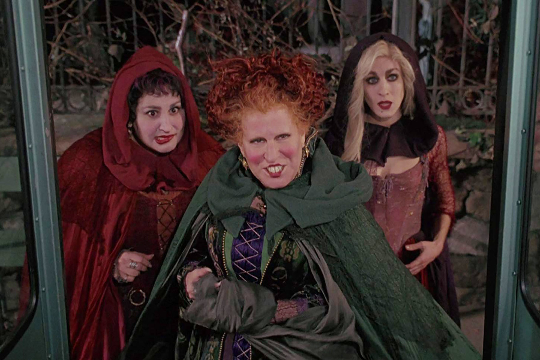 Get your dog ready for halloween with our top picks for the best pet halloween costumes for 2020. Hocus Pocus 2 Takes Step Towards Possible Halloween 2021 Release Date | Den of Geek