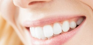 Dental Insurance Types