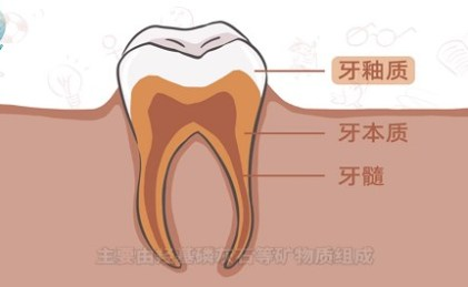 健康教育之齲齒的形成