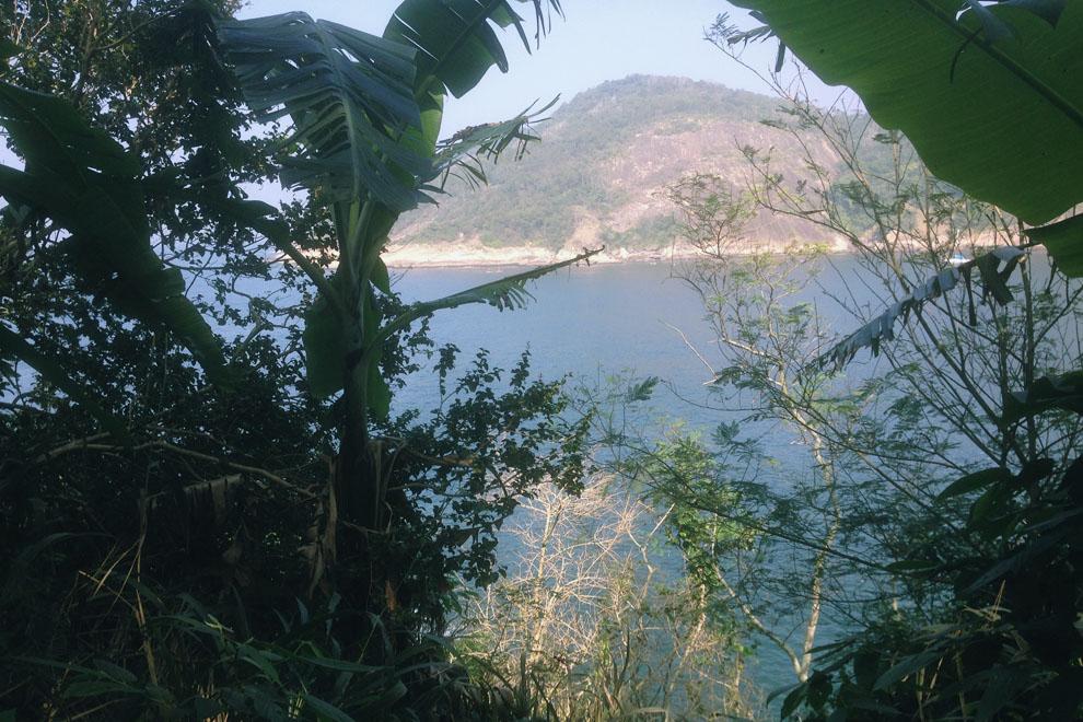 Pista Cláudio Coutinho oceano vegetazione