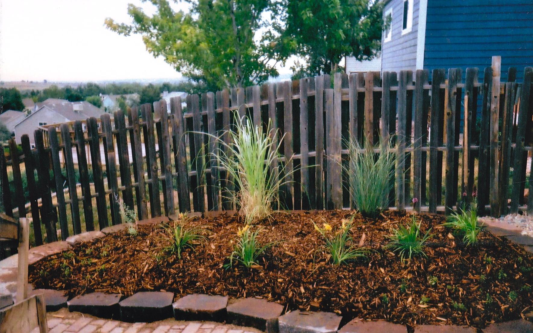 landscape design contractor denver landscaping architect for less