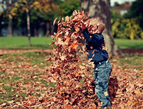 fall things to do in denver with kids