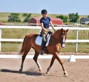 Sabine DE Trainer Profile