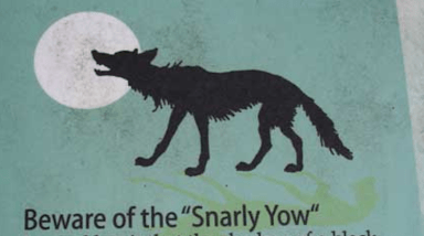 The Snarly Yow – Denver Michaels