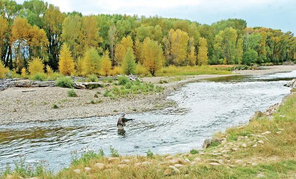 Colorado Parks and Wildlife is considering a plan to double the price of fishing and hunting licenses.