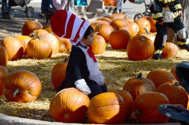 Mattheo Perez, 2, dressed as the Cat in the Hat, sits on a pumpkin in a pumpkin patch during the 30th annual Boo at the Zoo Halloween event at the Denver Zoo in Denver, CO on October 26, 2014.