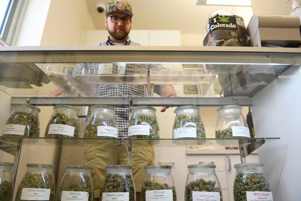 DENVER, CO - JUNE 13: The Pig 'N' Whistle dispensary at 4801 W. Colfax Ave in Denver recently received it's recreational marijuana license after it started as a medical dispensary. Manager Logan Langley shows off the medical marijuana it currently sells. They will soon sell recreational marijuana. The dispensary was photographed on Monday, June 13, 2016. (Photo by Cyrus McCrimmon/The Denver Post)