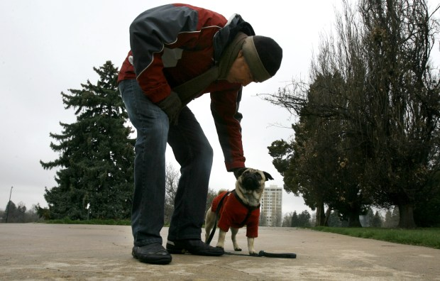 Capital Hill resident, Phillip Earle, plays with his beloved pug Angus, who is sporting a red doggie sweater that shields him from the cold mix of rain, sleet and snow that started falling in the Denver area late Friday morning. The pair were playing catch in Cheesman part braving the weather for a little fresh air and exercise. (Photo By: Nathan W. Armes)
