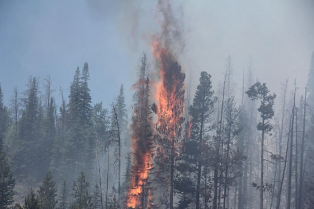 A scene from the Beaver Creek Fire on July 9, 2016. (Photo courtesy of J.Micheal Johnson)