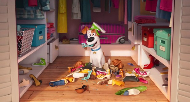 "Louis C.K. is the voice of Max, the top dog in the life of his owner, Katie (Ellie Kemper), and a leader among the other house pets in their New York City apartment building in ""Secret Life of Pets."""