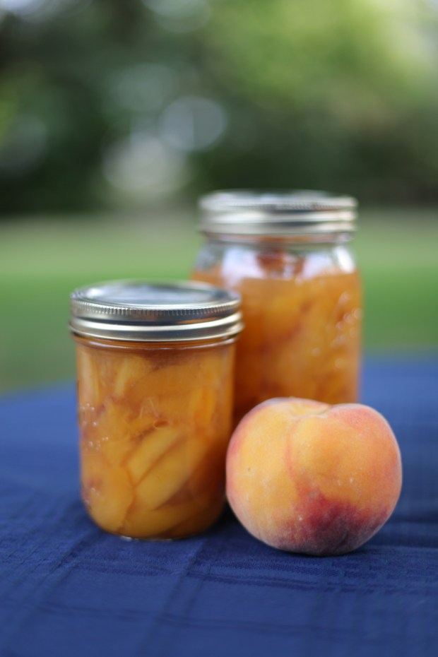 Canned Palisade peaches on August 18, 2016 in Denver, Colorado. Palisade peaches from Colorado's western slop are typically in season from late July through September.