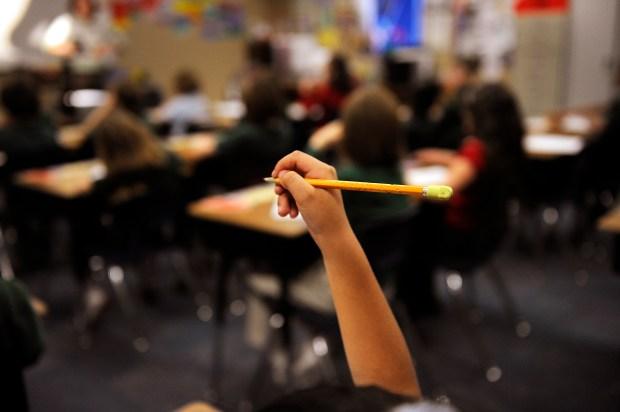 Elementary student cursive grip