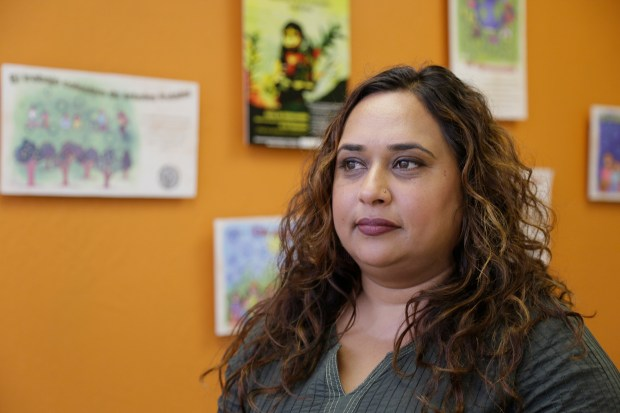 In this photo taken Friday, Sept. 2, 2016, Rajasvini Bhansali, executive director of the International Development Exchange, also known as IDEX, poses at her office in San Francisco.