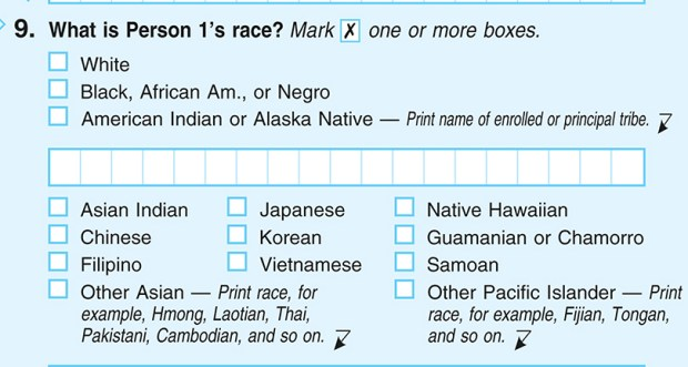 "A sample U.S. Census form from 2010, the last year the form included the word ""Negro."" In 2020, the census will use the terms ""black"" or ""African-American."" Other changes for 2020 will affect Hispanics, some Middle Eastern residents, and others."