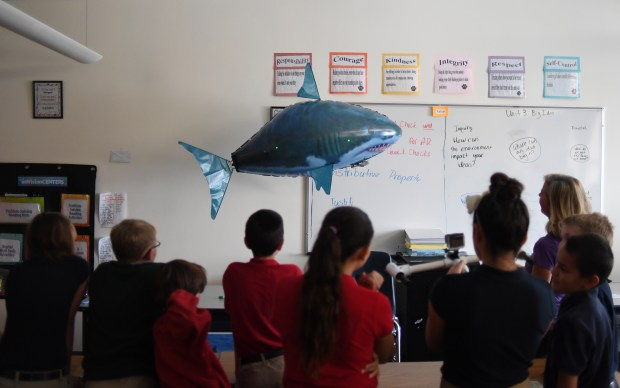 Mikki McComb-Kobza, of Ocean First Institute, teaches fifth-graders at The Academy of Charter Schools in Westminster to uses lasers to measure the length of a shark.