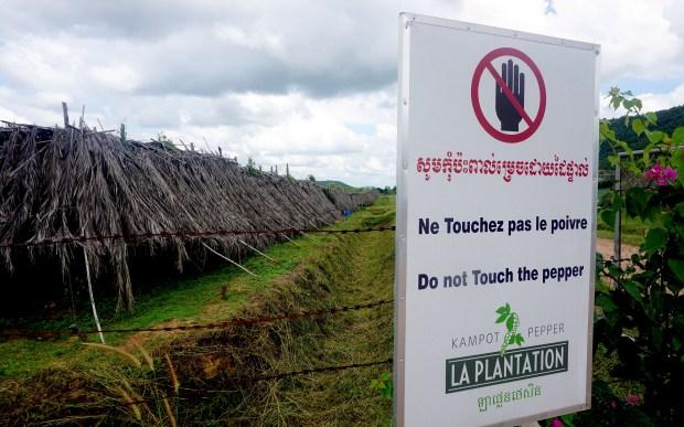 La Plantation in Kampot, Cambodia.