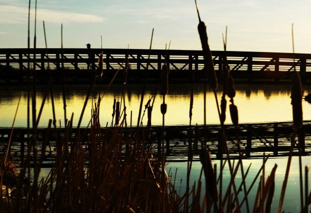 A man take an early morning around Sloan's Lake in Denver.