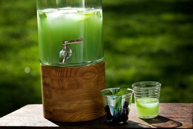 Swamp Water Punch. ...