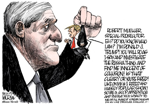 newsletter-2017-05-22-trump-mueller-cartoon-morin