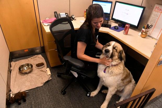 Olivia Ursi enjoys having the company ...