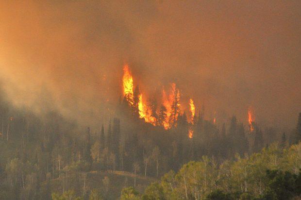 The Steer Park Fire burns near Wolf Mountain Ranch Monday evening.