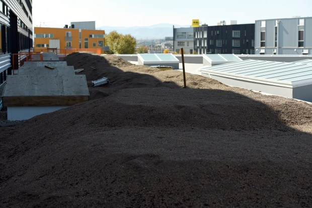 A look at the Green Roof ...