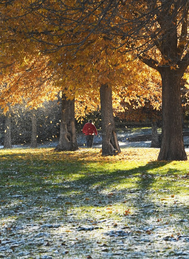 Snow melts from trees, at Garfield Lake Park, as a man takes a morning walk on October 27, 2017 in Denver, Colorado.