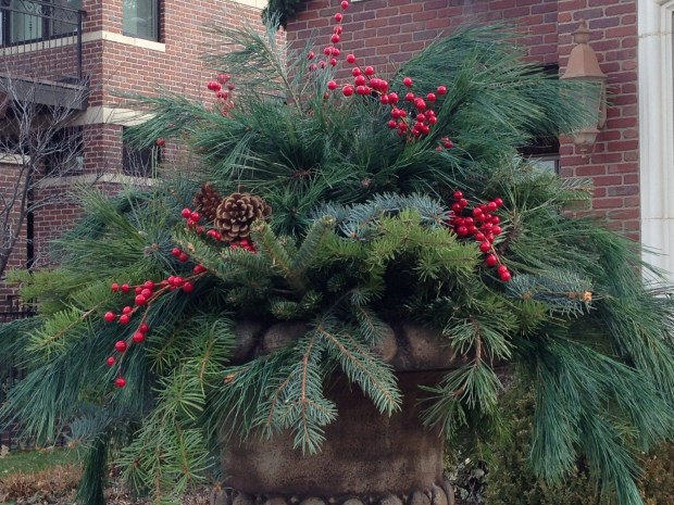 This large urn is overflowing with pine, blue spruce and fir branches, plus winterberry and pine cones.