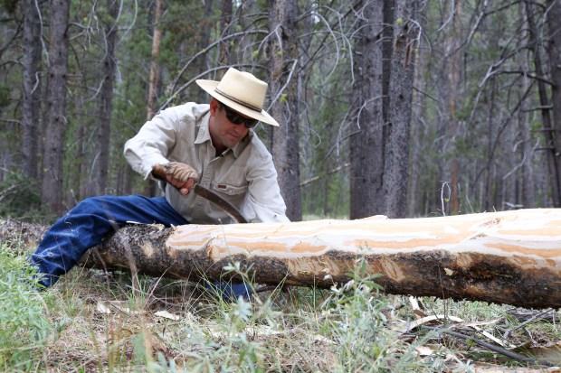 Steve Primm, conservation director at People ...