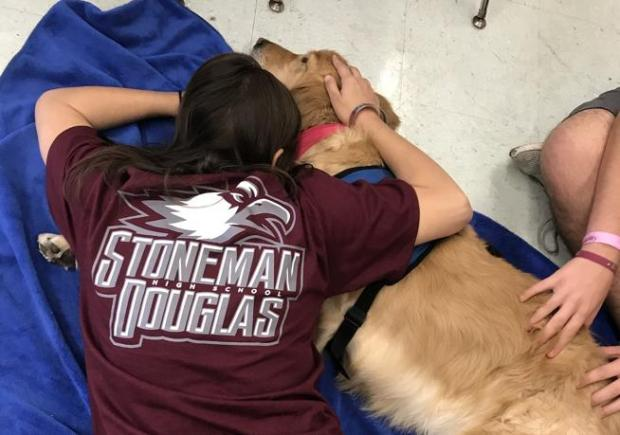 Cubby, a Golden Retriever from Fort Collins, offers comfort to students at Marjory Stoneman Douglas High School in Florida last week during their first days back after the Feb. 14 mass shooting. Cubby is one of 11 Lutheran Church Charities K-9 Comfort Dogs from around the country who visited the school that week and among 30 total who have offered comfort since the shooting.
