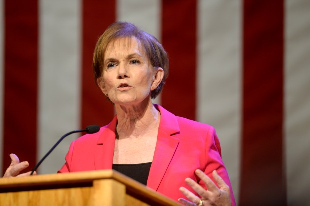 Donna Lynne speaks during a democratic ...