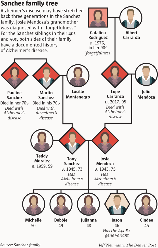 Alzheimer's disease winds its way through the Sanches family tree.
