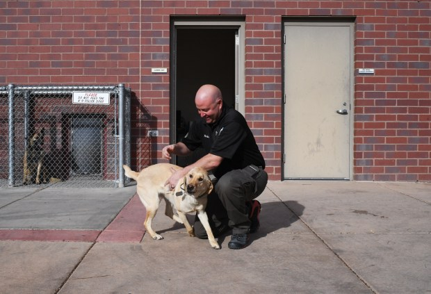 Vince Petkosek, with the Pueblo Police Department K-9 Unit, plays with Sage