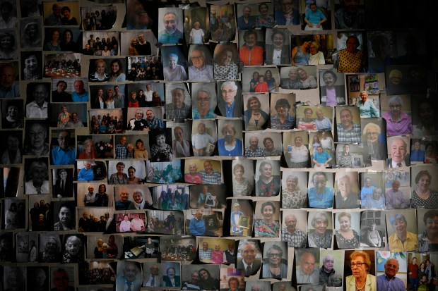 These are photographs of Holocaust survivors ...