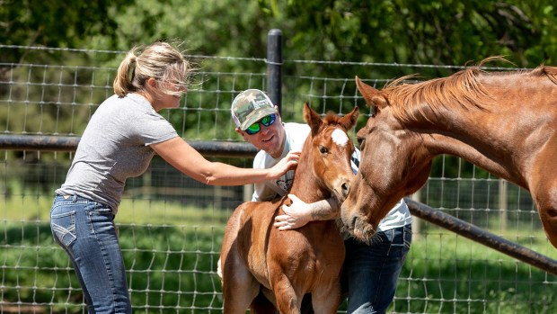 Aaron Cook and his wife Jennifer work with a foal at Rafter 28 Ranch in Alvarado, Texas on April 21, 2019.