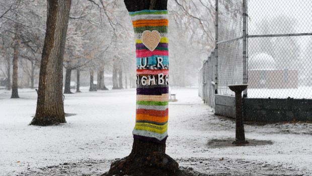 A crocheted tree-wrap with a timely, ...