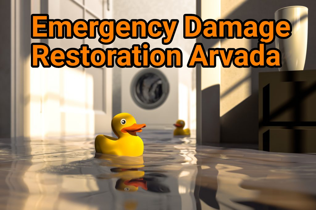 Emergency damage restoration Arvada