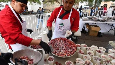 Photo of Inicia el Festival de la Fresa en Irapuato