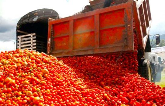 Photo of Los tomates de la vergüenza